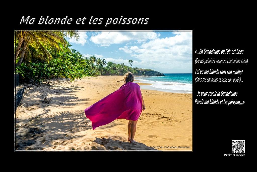 21_Ma_blonde_et_les_poissons.jpg (338 KB)